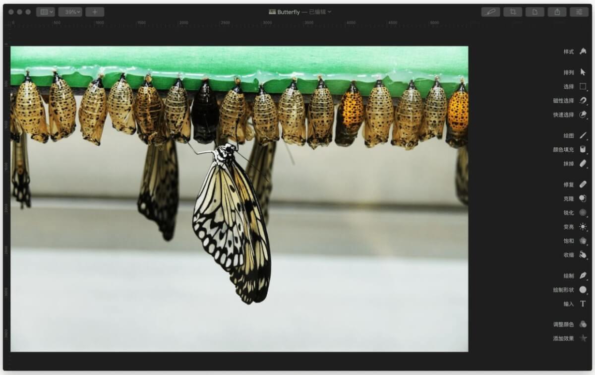 [软件应用]Pixelmator Pro轻松搞定常见的图片处理需求插图1