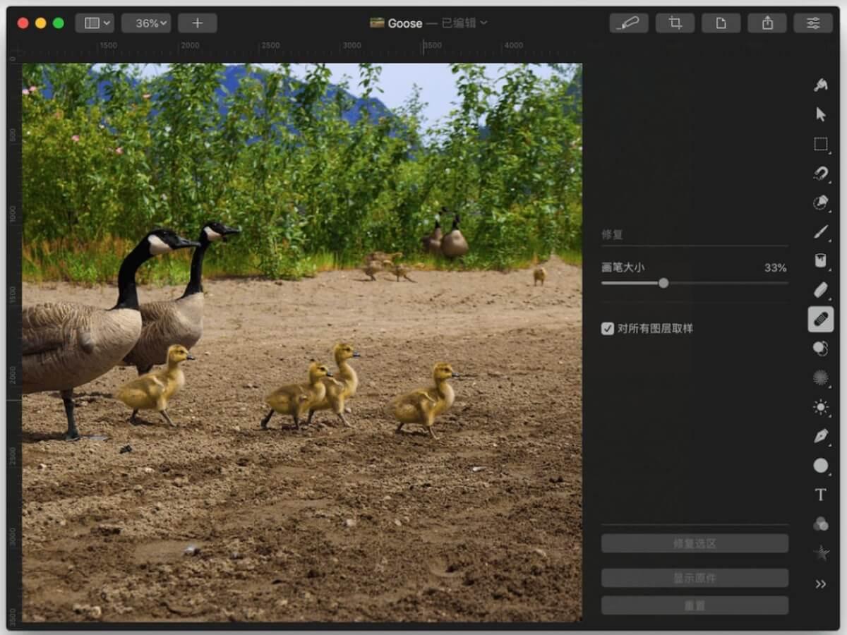[软件应用]Pixelmator Pro轻松搞定常见的图片处理需求插图5