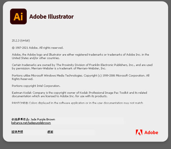 2021-Adobe Illustrator Win SP 25.2.1.236 单软件 中文/英文软件-免费下载插图